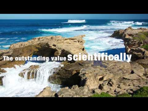 ความหลากหลายทางชีวภาพในแหล่งมรดกโลกทางธรรมชาติ