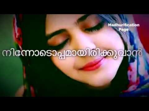 Malayalam Love Quotes Extraordinary Malayalam Love Quotes.whatsapp Status 04  Youtube