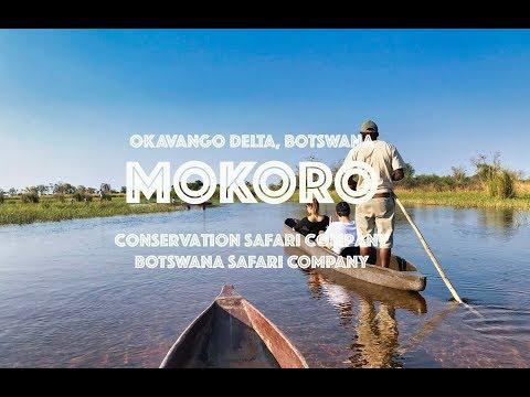 Okavango Delta mokoro experience - see it...