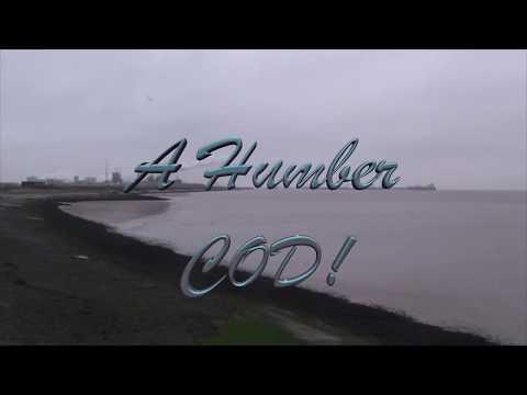 A Humber Cod!
