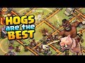 HOGS ARE THE BEST at TH10 | Town Hall 10 Attack Strategy | Clash of Clans