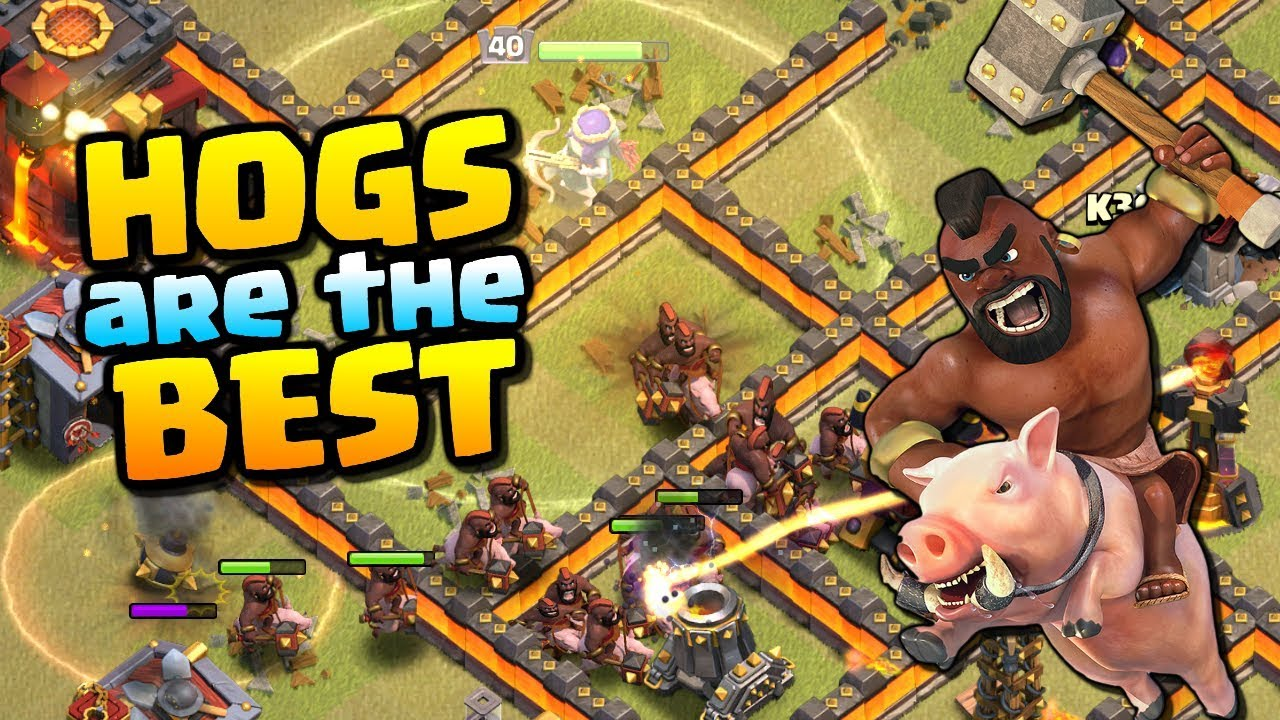 HOGS ARE THE BEST at TH10 | Town Hall 10 Attack Strategy