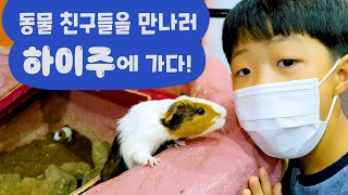 신기하고 귀여운 동물 친구들을 만났어요!! 동물원 키즈까페 놀이 로미유 가족 일상 브이로그 - 로미유 브이로그