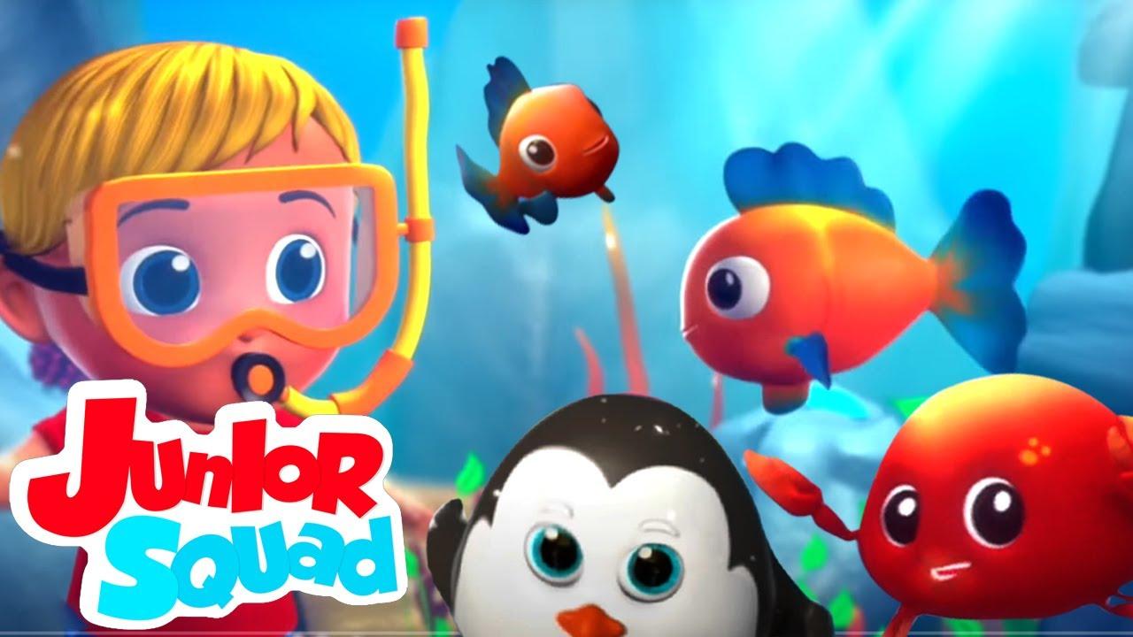 Animal Habitat | Musica infantil portuguesa | Educação | Junior Squad | Desenhos animado