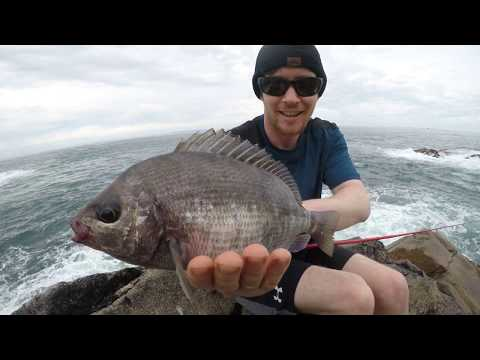 Black Bream On The Lures | Jersey Channel Islands | Bass Fishing EP 11