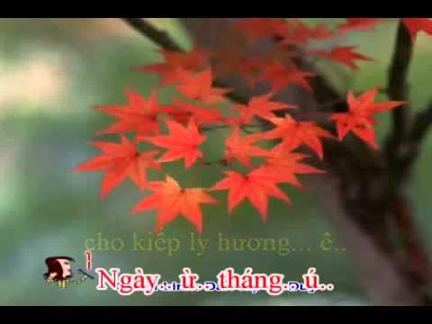 Trich Doan - Lo Chuyen Do Tinh - Karaoke - SongCa.avi