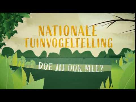 Nationale Tuinvogeltelling