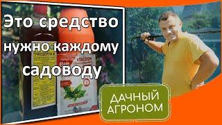 Триходермин Супер средство от фитофтороза и всех болезней Влияние триходермина на урожай