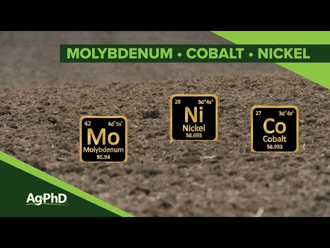 Molybdenum • Cobalt • Nickel (From Ag PhD Show #1132 Air Date 12-15-19)