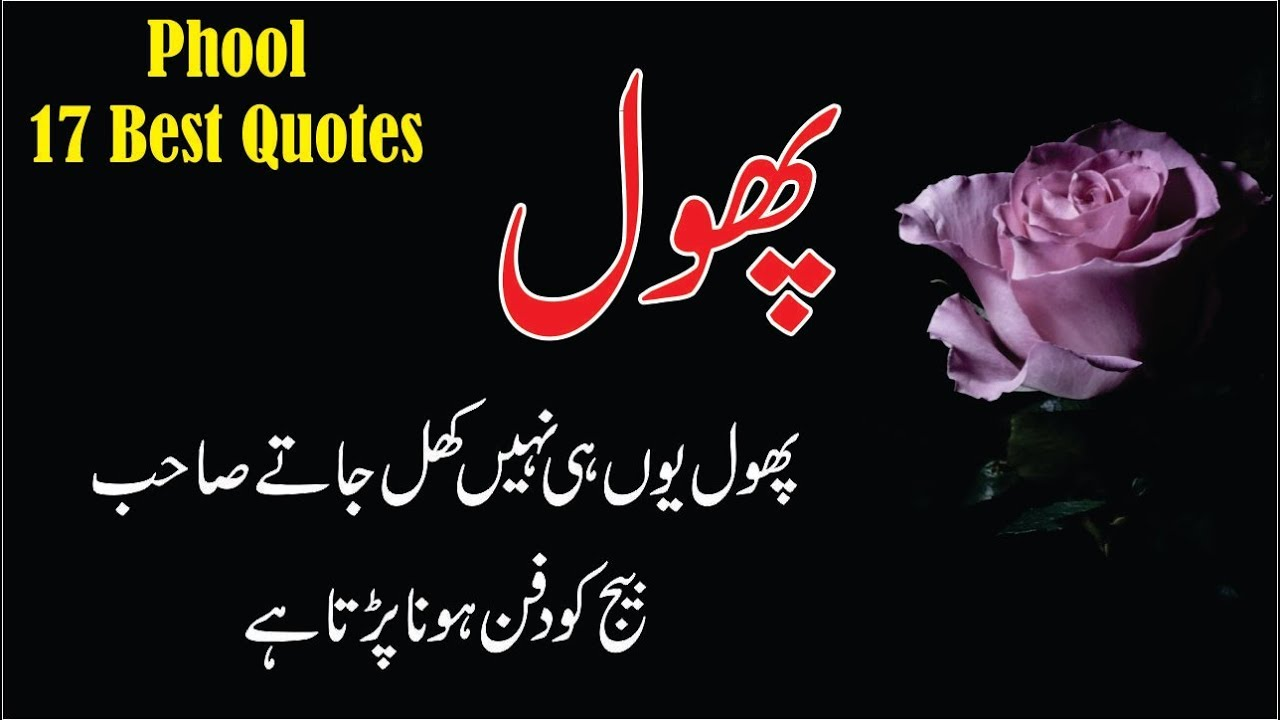 17 Best Phool Quotes In Hindi Urdu With Voice And Images Quotes
