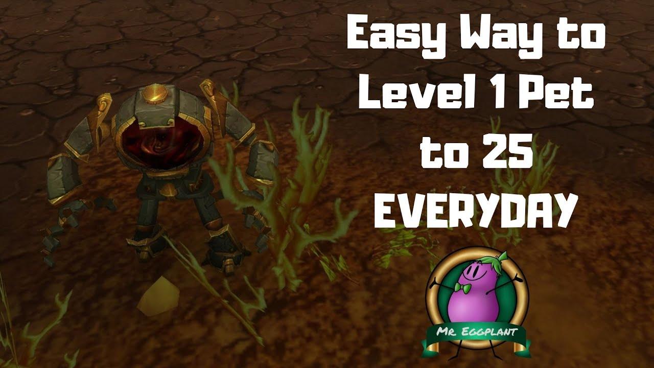 How To Level 1 Battle Pet To 25 Everyday World Of Warcraft 8 3 Youtube