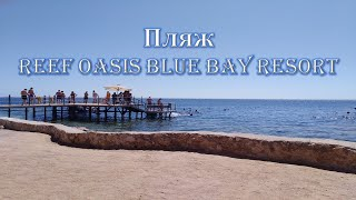 пляж reef oasis blue bay resort spa 5