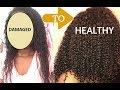 HOW I REPAIRED MY HEAT DAMAGED HAIR USING 7 STEPS!!!!!!