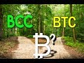 Market Downturn, Investor Awareness? Claim Your BCC Coins.
