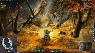 Guild Wars 2 Rich Platinum Farm