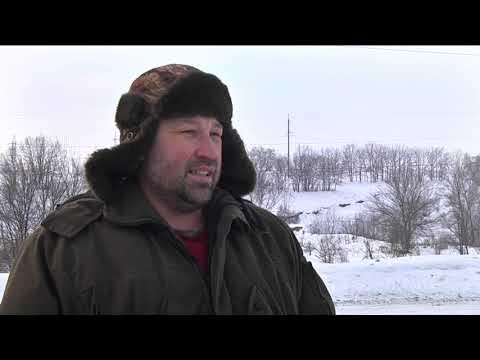 9-channel.com: Мисливці виїхали погодувати диких фазанів, а натрапили на браконьєрів