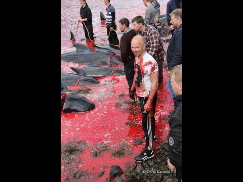 Esau Kills whales for sport