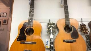 Sheryl Crow, Steven Segal, Paul McCartney: Fun Mandolin Brothers memories
