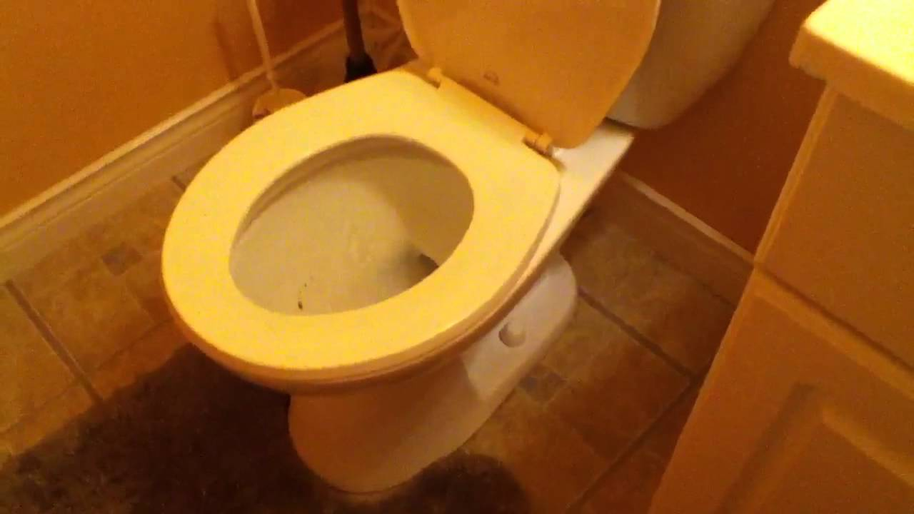 Clogged Toilet - YouTube