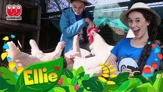 Learn About Chickens! | Ellie Explorer's Animal Adventures | Animal Fun Facts for Kids
