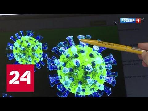 В России создан оперативный штаб по предупреждению распространения коронавируса - Россия 24