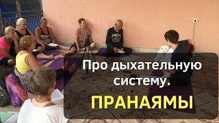 Дыхательная система, разбор пранаям (Антон Шахманов)