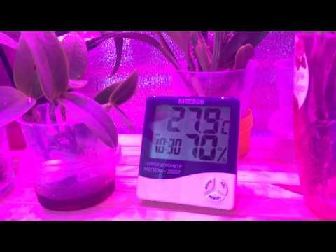 Как повысить влажность в гроубоксе
