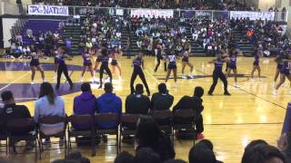 Beyoncé 7/11 | Southwind High Dance/Cheer team 2015 pep rally