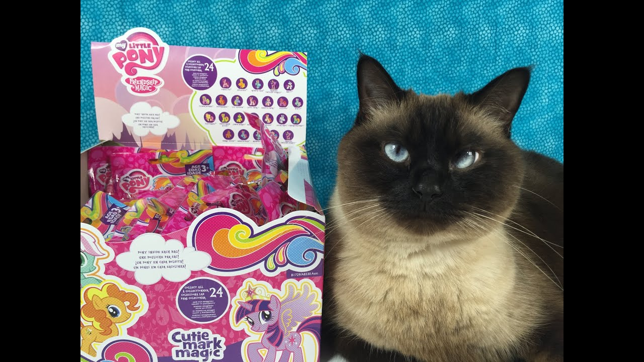 My Little Pony Cutie Mark Magic Full Box Set Wave 12 Blind