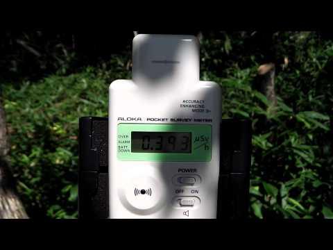 群馬の放射線測定・赤城大沼その2(高線量)