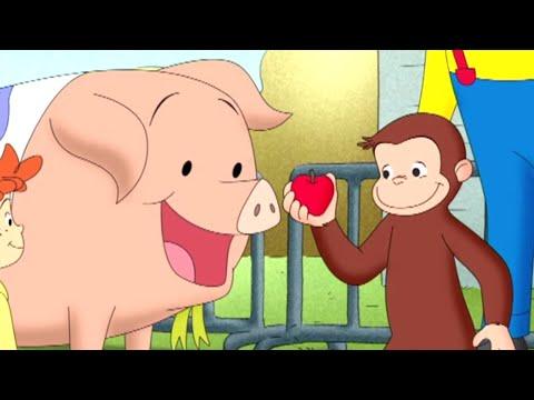 Curious George 🐵Curious George, Hog trainer 🐵 Kids Cartoon 🐵 Kids Movies 🐵Videos for Kids