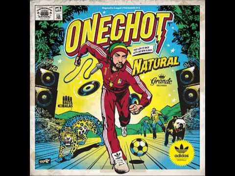 onechot disco natural