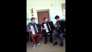 Celine Dion - My Heart Will Go On (Crazy Accordion Trio Cover)