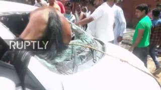 India  Help that horse! Animal ploughs headfirst into car windscreen