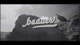 Baauer Harlem Shake MP3 DOWNLOAD