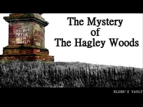 The Mystery of The Hagley Woods