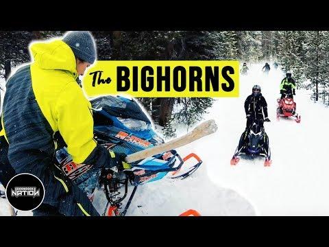The BIGHORNS