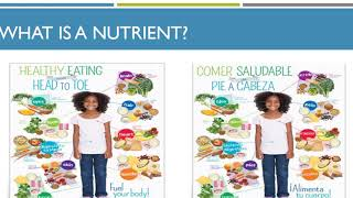 1.02 understand guidelines for healthy eating
