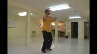 Chen Style T'ai Chi Chuan 19 movement form.wmv