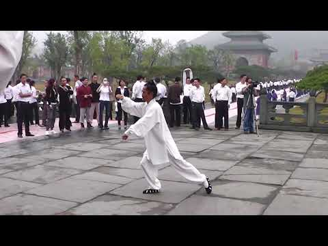 Master Yuan Xiu Gang Demonstrating Tai Chi 28 with International Class