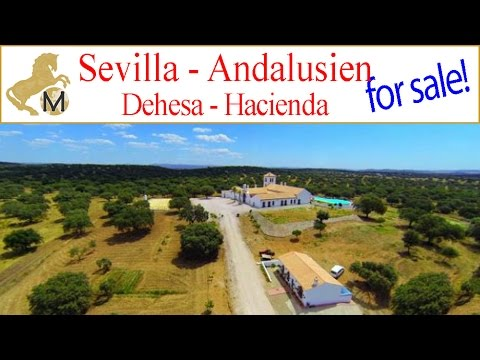 for sale: Dehesa, Farm, Hacienda, Cortijo Sevilla, Andalusie