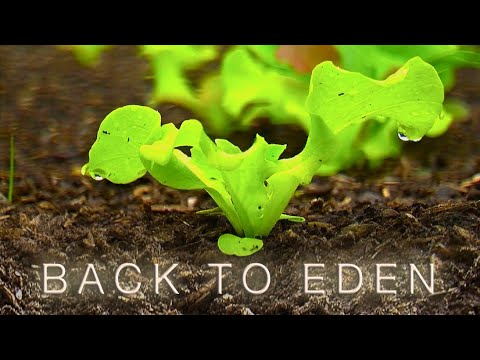 Back To Eden Organic Gardening Film | How to Grow a Vegetable Garden