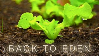Back To Eden Gardening Documentary Film - How to Grow a Vegetable Garden