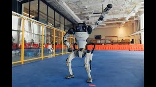 Do You Love Me Dancing Robots