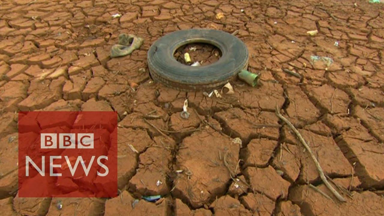 'Sequía de Brasil vinculado a la deforestación de la Amazonia'