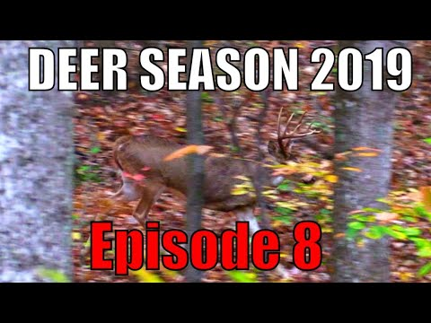 KENTUCKY BUCK DOWN! 2019 Deer Season- Episode 8. CRAZY Recovery. Self-Filmed Bowhunting Adventure