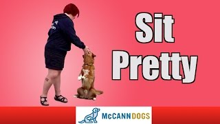 """Teach Your Dog How To """"sit Pretty"""""""