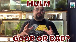 MULM! Good or Bad?