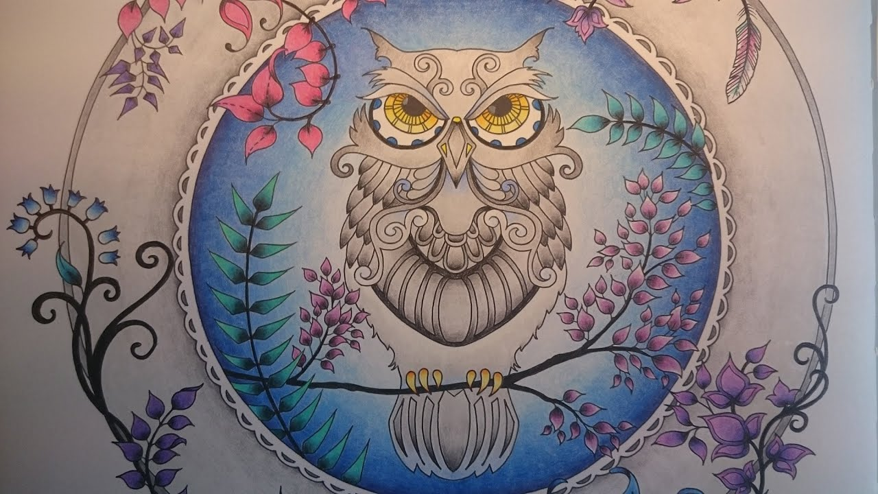 Enchanted Forest Johanna Basford How To Color A Owl Youtube