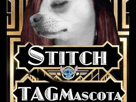 El mejor Furry Friend Tag del Mundo  dani-chinchi  Lana del Rey Dog Style